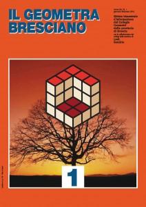 Geometra Bresciano 1-16 Pag. 16